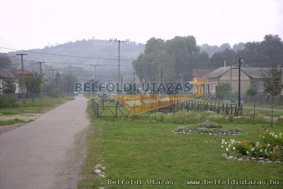 Borsodb�ta (6)