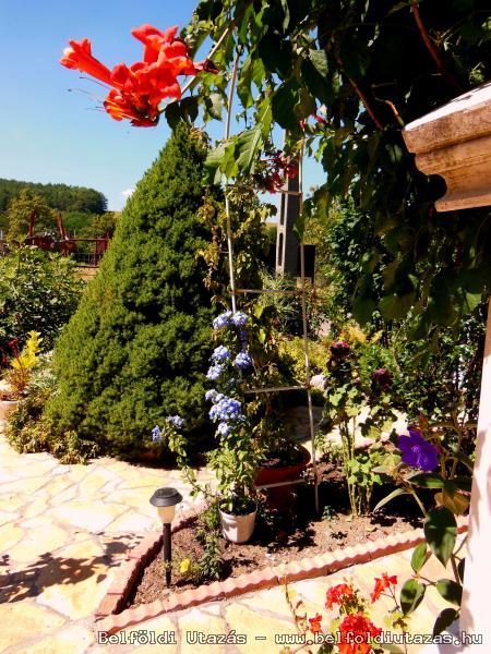 Parkos�tott kert