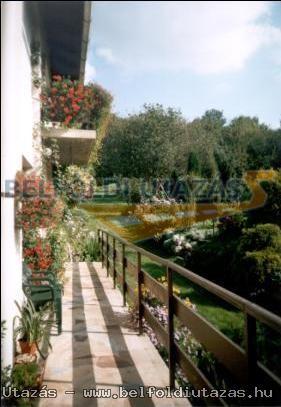 Gasthaus Immergrün (30)