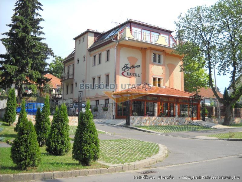 Fortuna Hotel (1)