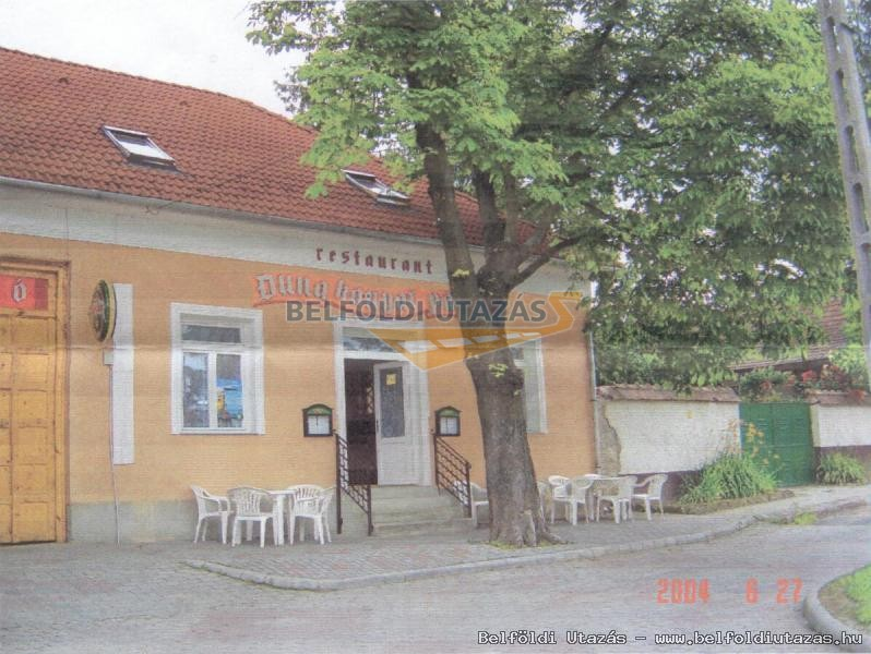 Dunakanyar Panzió és Étterem (1)