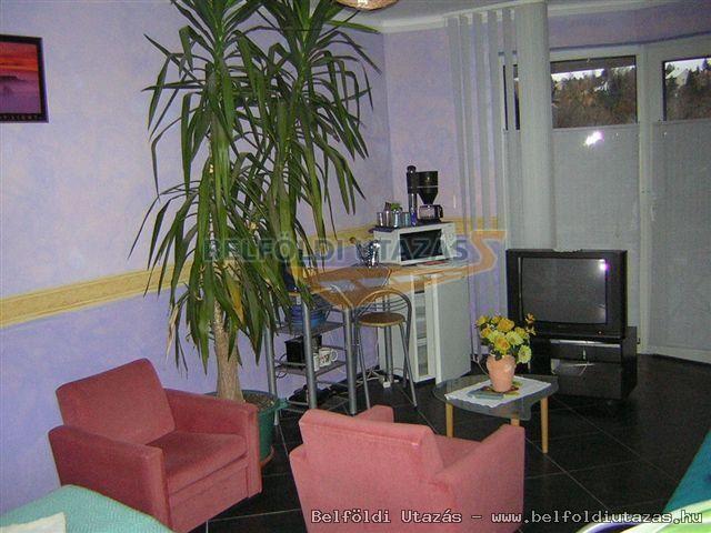 Kastély Apartman, Vendégház (3)