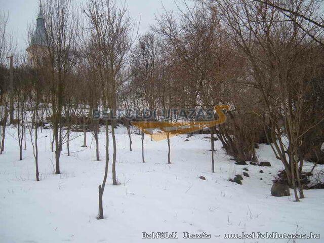 Vilyvitányi Szabadidő Tábor (7)