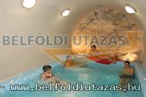 Villa-Vitae Wellness Hotel (9)