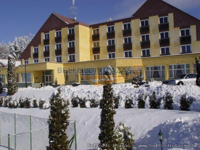 Hotel Narád & Park (1)