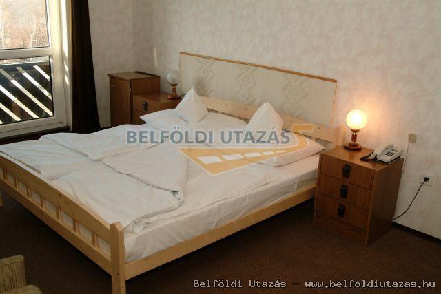 Hotel Narád & Park (5)
