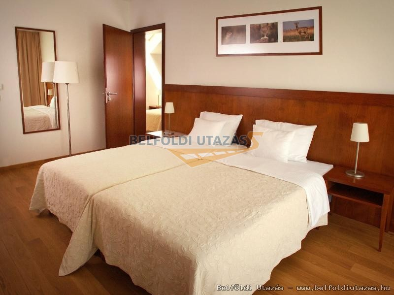 Tisza Balneum Thermal Hotel Konferencia & Wellness Központ (13)