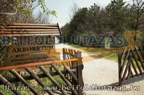 Pákozd-Sukorói Arborétum (2)