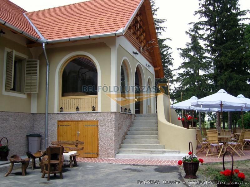 Czinege Villa Vadászház (1)