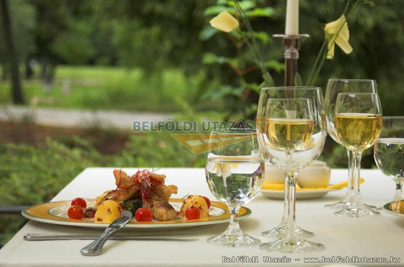 Romantik Hotel Szidónia Kastély (4)