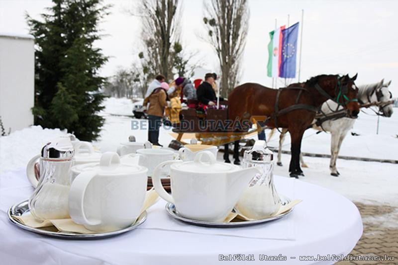 Diamant Hotel Szigetköz **** superior Conference,Spa & Family Resort (36)