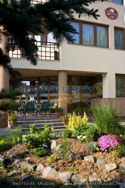 Vasvirág Hotel (19)