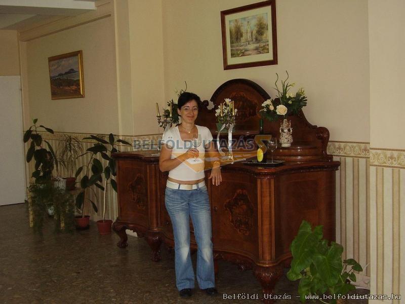 Vasvirág Hotel (10)