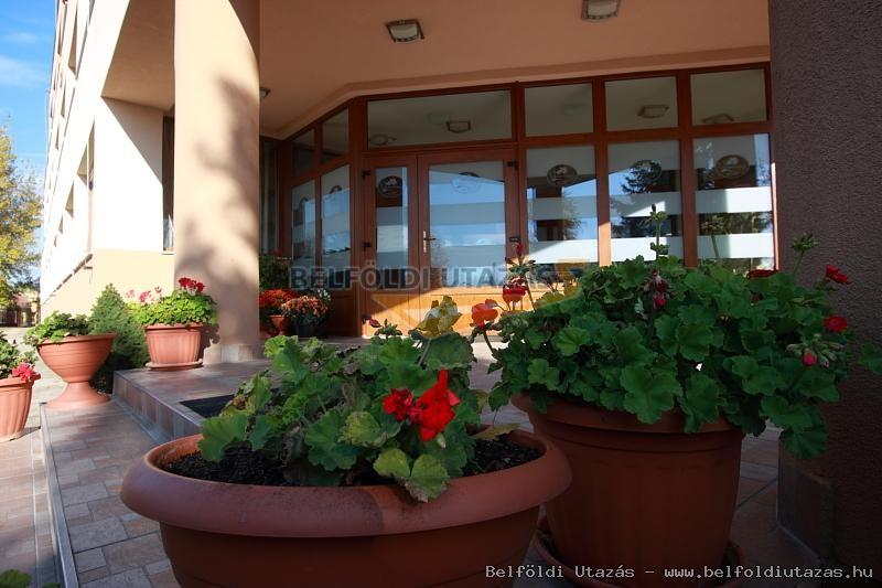 Vasvirág Hotel (16)