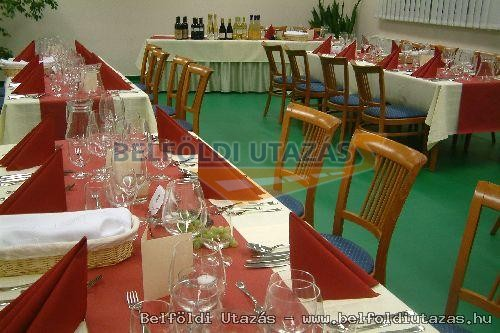 Gyopáros Club Hotel (8)